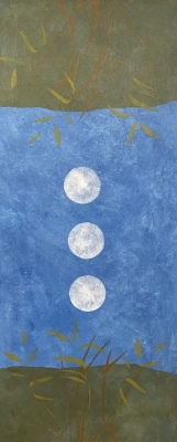 3 moons over pluto